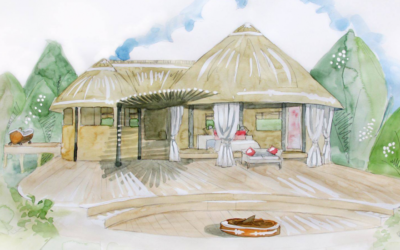 New Lion Camp Design